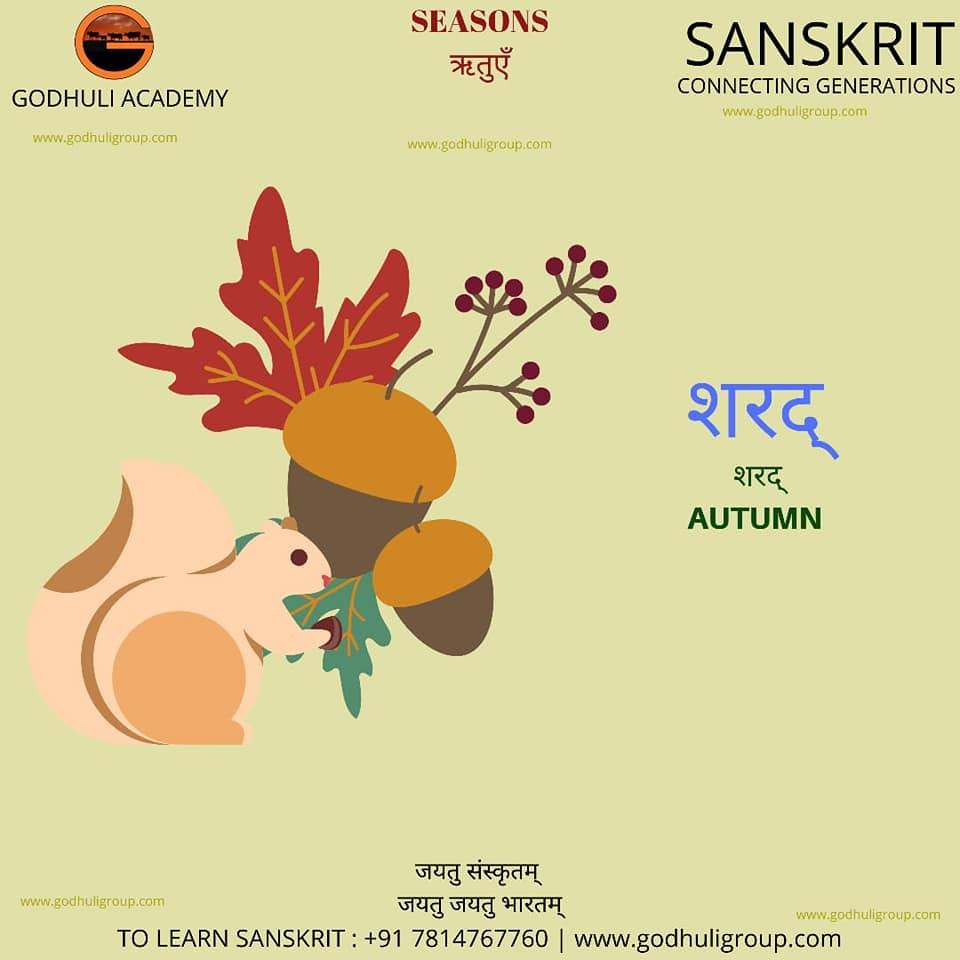 Sanskrit11