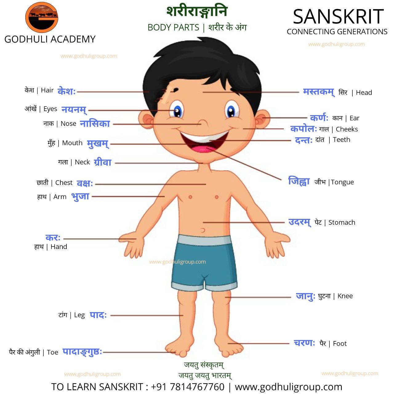 Sanskrit7