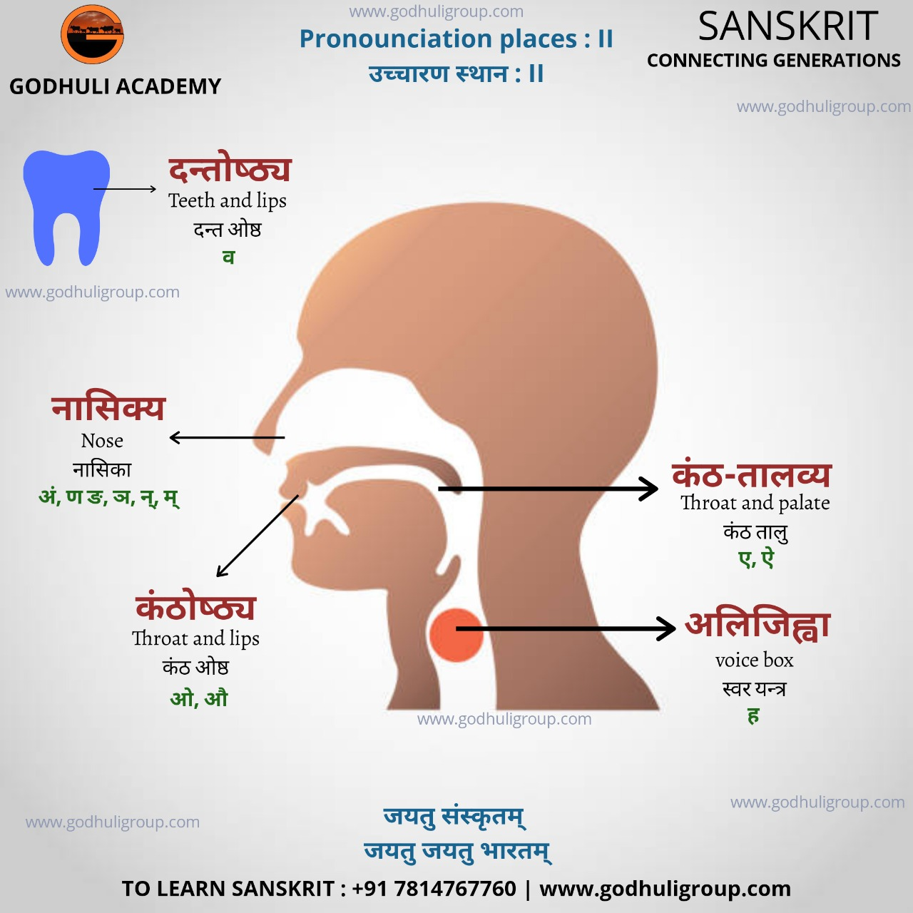 Sanskrit8